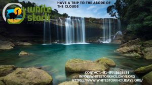 Contact 91 8448448431info@whitestorkholidays.orgVisit Our Website  https   www.whitestorkholidays.org  300x169