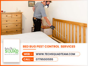 Bed Bug Pest Control 300x225
