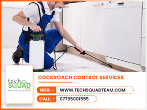 Cockroach Control  Services 300x225